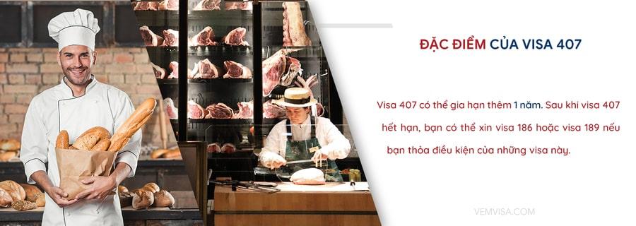 đặc điểm của visa 407
